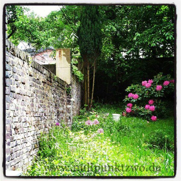 2014-05_09 Garten