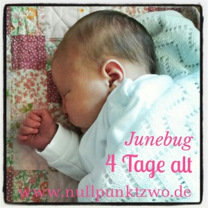 Junebug4