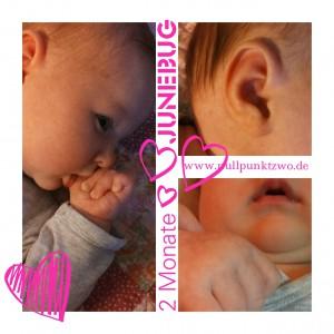 2 Monate Junebug