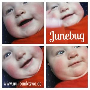 Junebug fast 5 Monate