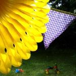 Mein Wochenende in Bildern 04.-07.06. {2015/23}