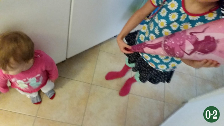 ladies_in_pink
