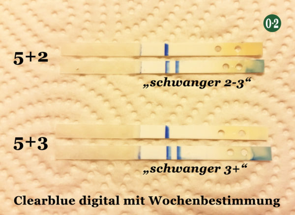 Testreihe_Clearblue_digital_2_3