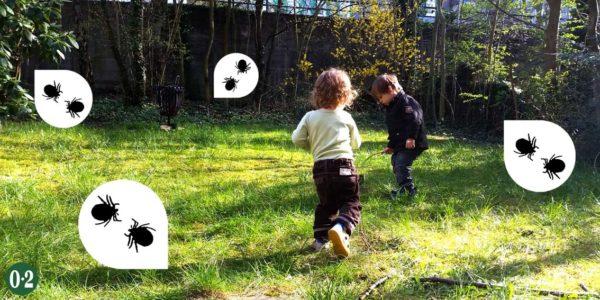 Zecken im ganz normalen Hausgarten