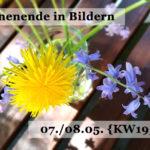 Mein Wochenende in Bildern 07.05./08.05. {2016/19}
