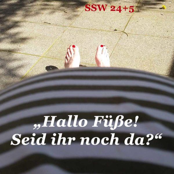 SSW_24_5