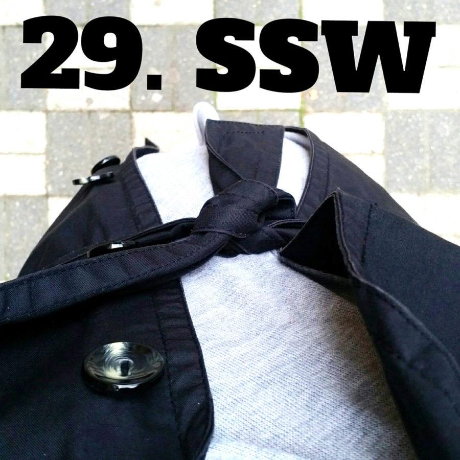 SSW_29