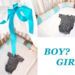 Bruder oder Schwester? Junge oder Mädchen? Boy or girl?