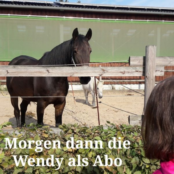 wendy-abo