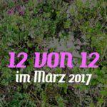 12 von 12 im März 2017