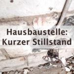 Bau- Logbuch Eintrag 04: Zwischenstand & Stillstand