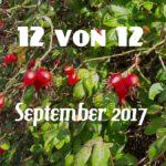 12 von 12 im September 2017