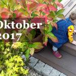 Im letzten Monat… Oktober 2017