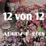 12 von 12 im August 2018