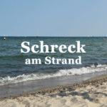 Schreck am Strand