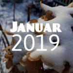 Im letzten Monat | Januar 2019