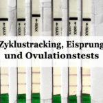 Kinderwunsch & Verhütung: Ovulationstests