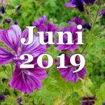 Im letzten Monat | Juni 2019