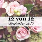 12 von 12 im September 2019