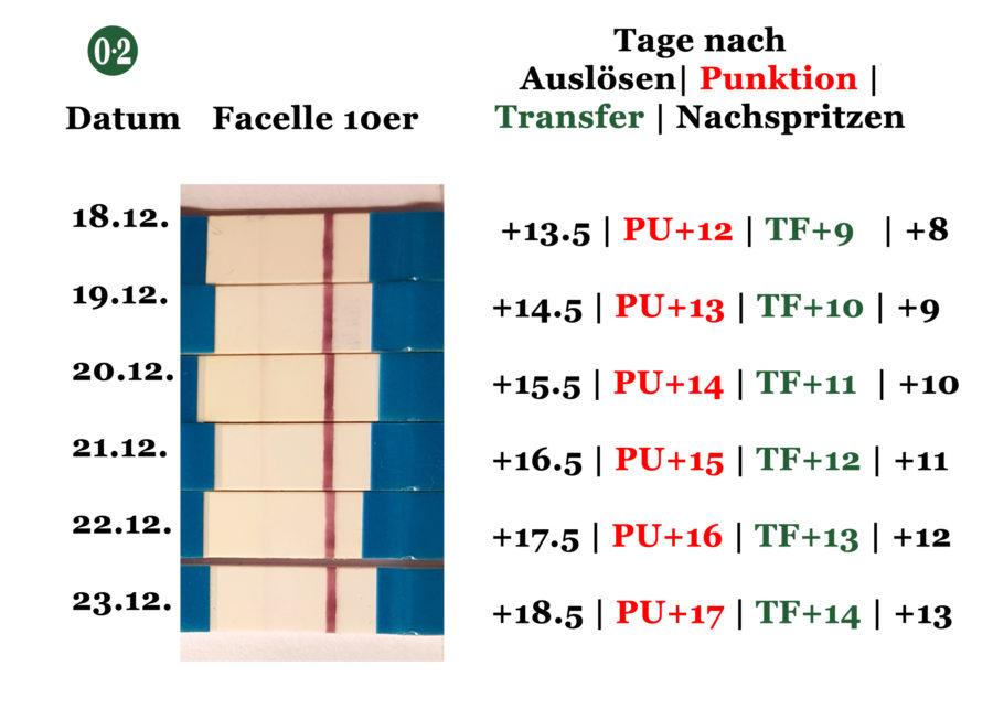 3.ICSI: Testreihe mit 10er Facelle nach Brevactid - Auslösen und zur Einnistung - und Transfer eines 8Zellers an Tag 3