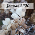 Im letzten Monat | Januar 2020