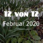 12 von 12 im Februar 2020