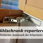 Kühlschrank reparieren statt neu kaufen