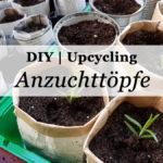 DIY & Upcycling: Anzuchttöpfe aus Alltagsmaterialien