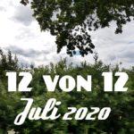 12 von 12 | Juli 2020