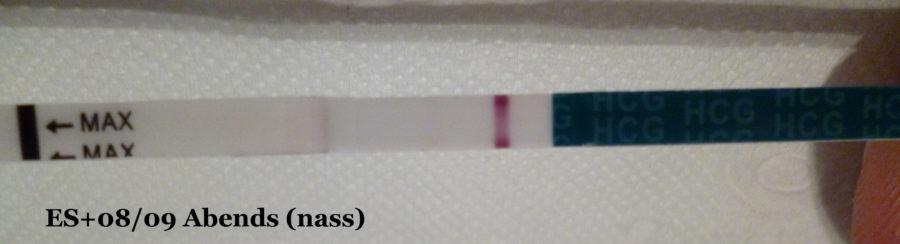 Schwangerschaftstest Babytest 10er ES+08/09 abends