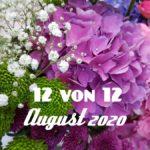 12 von 12 | August 2020
