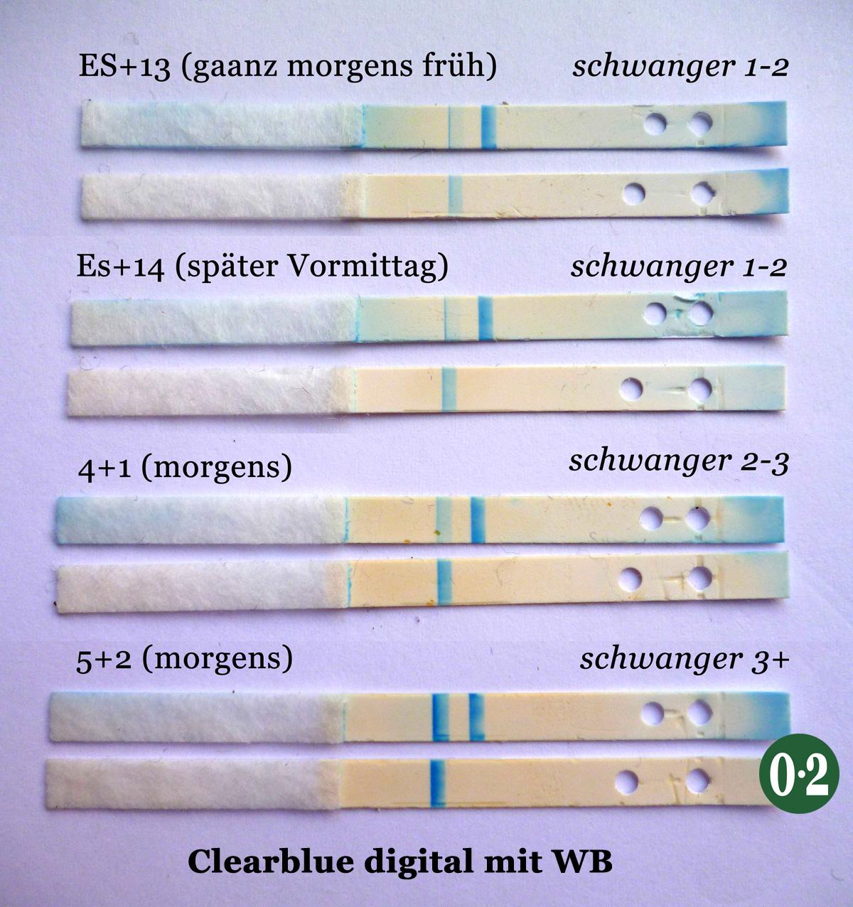 Schwangerschaftstest Clearblue Digital Testreihe