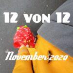 12 von 12 im November 2020