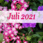 Im letzten Monat | Juli 2021