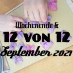 WiB & 12 von 12 im September 2021
